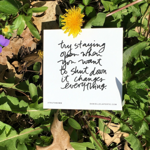 may 2017 truthbomb dandelion